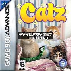 可爱小猫们(Catz )