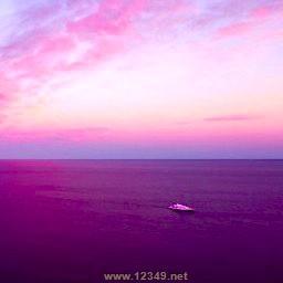 深紫的海TD v3.3