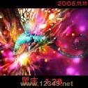 星座v1.29周年庆