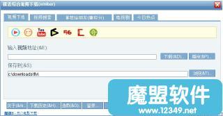 稞麦综合视频下载器(xmlbar)FLV Downloader 6.9绿色版软件界面