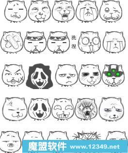 猥琐猫表情下载2013(猥琐猫qq动态表情)大全搞笑图片好玩的图片